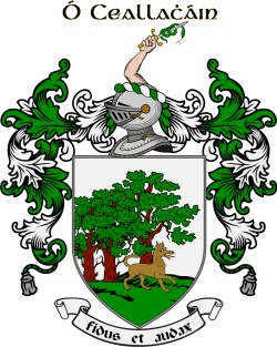 O'CALLAGHAN family crest